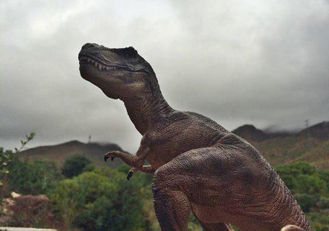 Estepona Dinosaur Theme Park