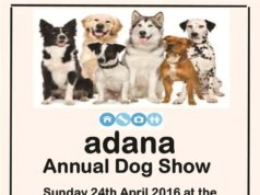 Adana dog show 2016
