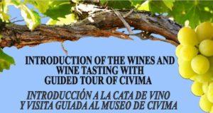 Wine Tasting in Manilva