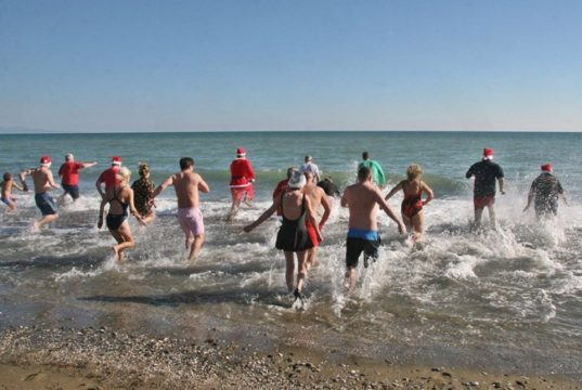 Spartan Swimmers